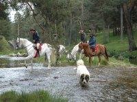 Dando una vuelta a caballo
