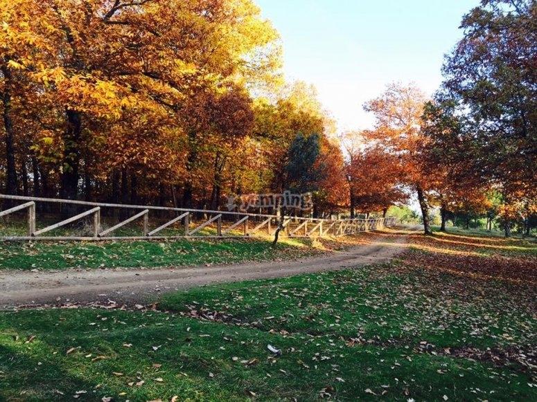 Paseo en quad por la sierra en otoño
