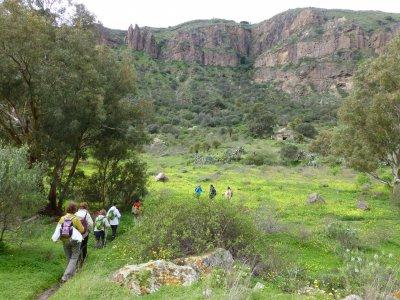 Ruta en Caldera de Bandama en Gran Canarias 5h 30m