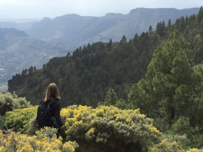 Ruta en Triángulo Natural de Gran Canaria 6h 30m