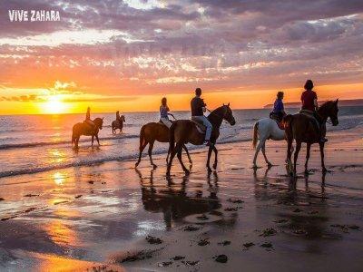 在Zahara海滩的马术