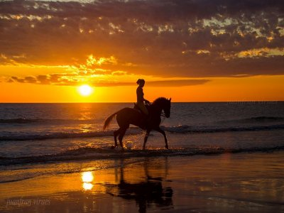 Moonlit beach horse ride in Zahara de los Atunes
