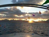 Ver cetáceos al atardecer en Lanzarote 2 horas