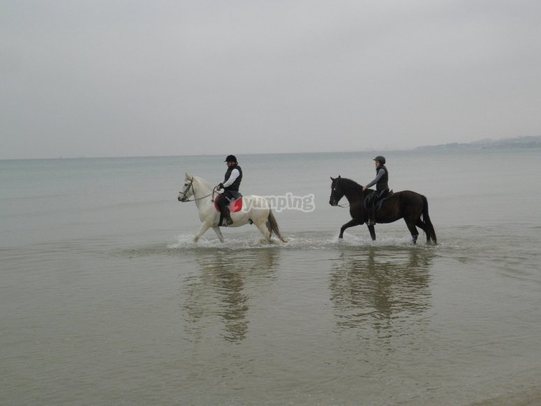 By horse in the water