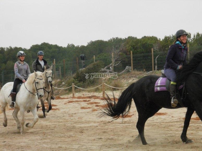 Gallop starting