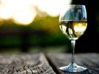 葡萄酒品尝