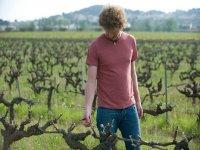 Recorriendo las vinas