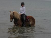 Jinete joven en el agua con el caballo