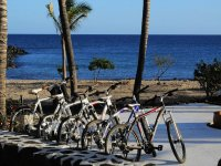 biciclette sul lungomare