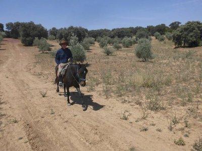Pasear a caballo hasta Los Arroyos con comida