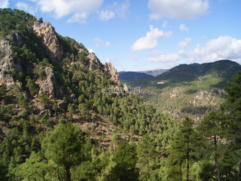 Sierra del Agua