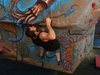 Striving for artificial climbing