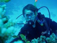 entre los corales