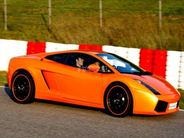 Guida sul circuito di una Ferrari