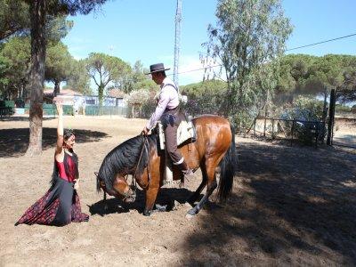 Spettacolo equestre di flamenco nei gruppi di Doñana