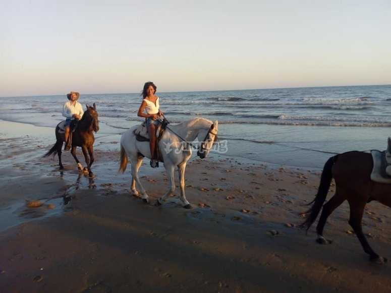Salida a caballo Doñana