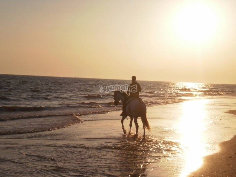 A caballo por la playa de Huelva