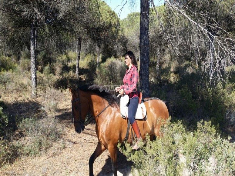 Travesía a caballo por Huelva