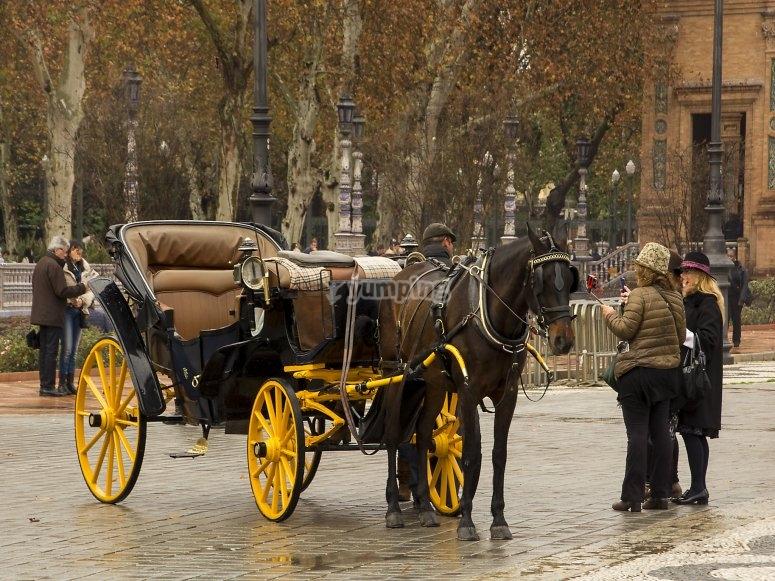 Viaje en carruaje de caballos por Huelva