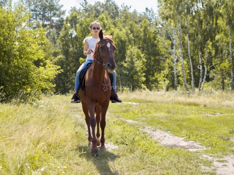 Excursión a caballo con formación