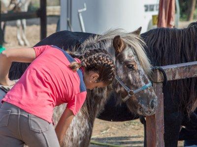 Clase de equitación en Palamós de 1 hora