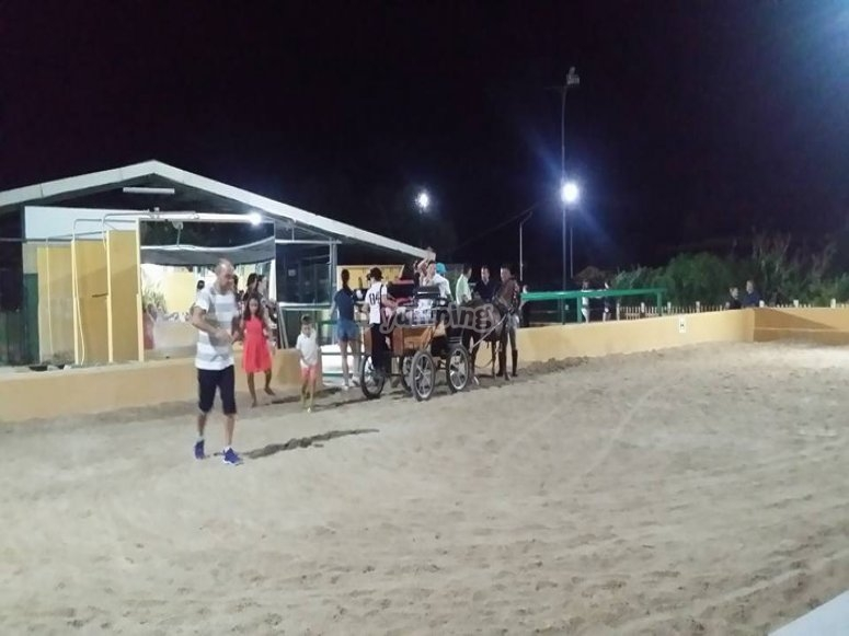Carro de caballos en el recinto