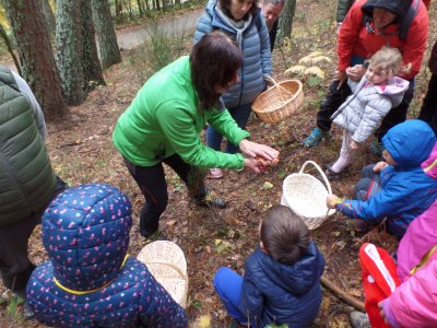 Mycological route in Sierra de Madrid for kids