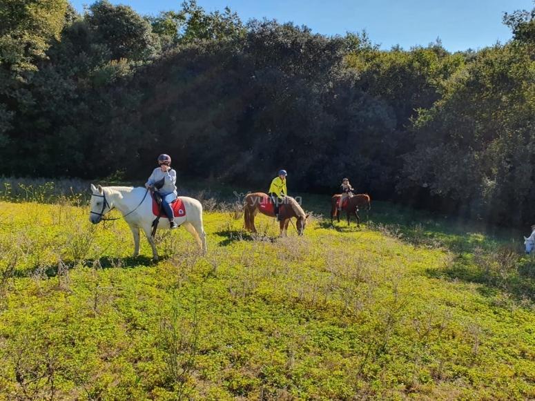 Con los caballos en el Monteseny