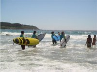 surf entra