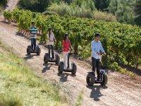 Ruta en segway por nuestros viñedos