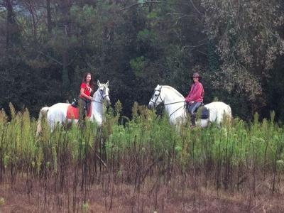Ruta caballo VIP por Pantano Vallfornés y comida