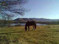 Horseback riding through Lozoya Valley 2h