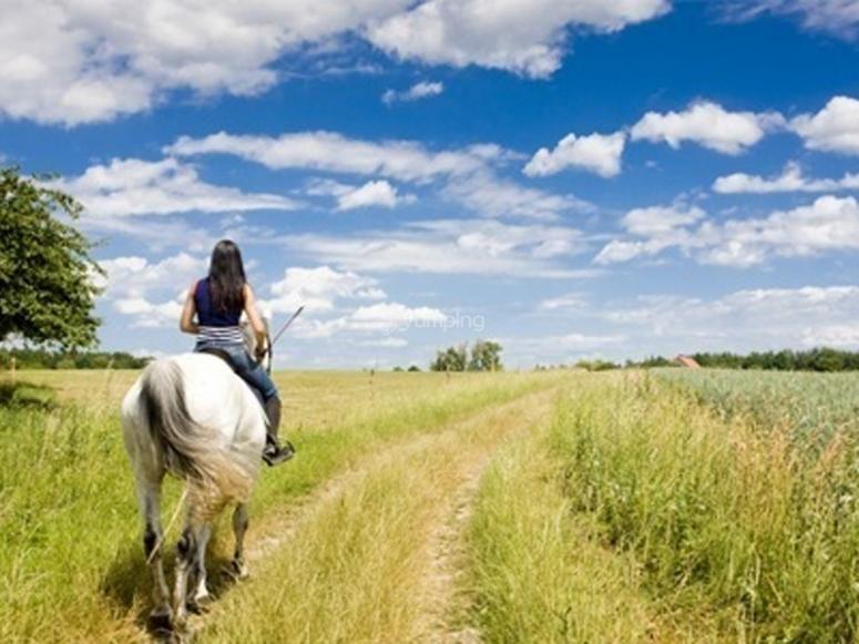 Passeggiate a cavallo attraverso la campagna