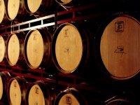 Wooden barrels in a row