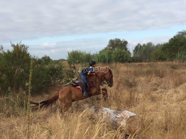 Montar a caballo en Doñana