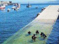 Iniciacion al buceo en Galicia