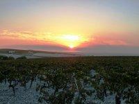 Preciosos atardeceres en Jerez de la Frontera