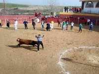 Bull-fight with meal and open bar, Toledo
