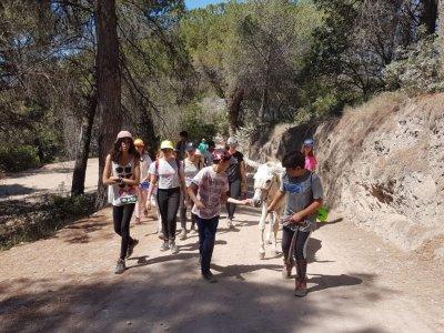 Campamento hípico verano en Sant Feliu Semanal
