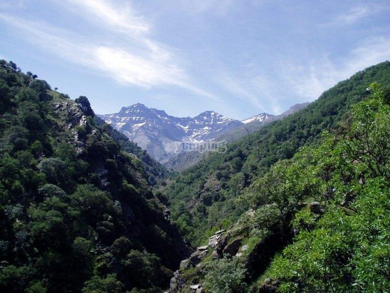 Hiking across Vereda de La Estrella