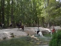 Ruta a caballo por río Guadalentín y río Turrilla