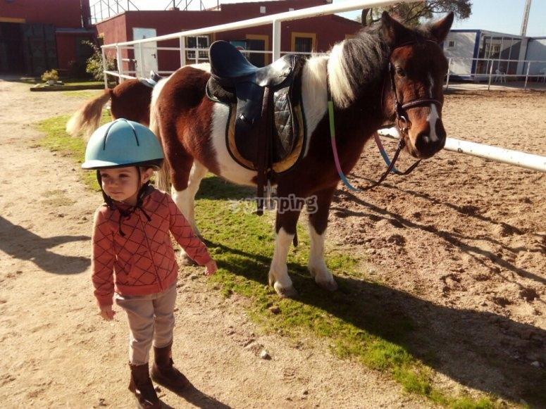 Cuidando al pony