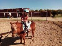 Paseo en pony alrededores río Jarama para niños
