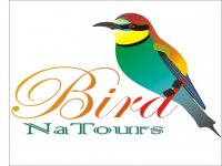 BirdNaTours