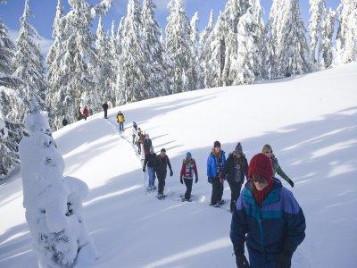 穿越比利牛斯山脉的雪鞋游览