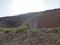 Desierto en Canarias