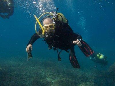 兰萨罗特岛的两次导游潜水
