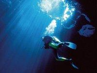 特内里费岛的潜水洗礼