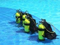 与潜水队见面