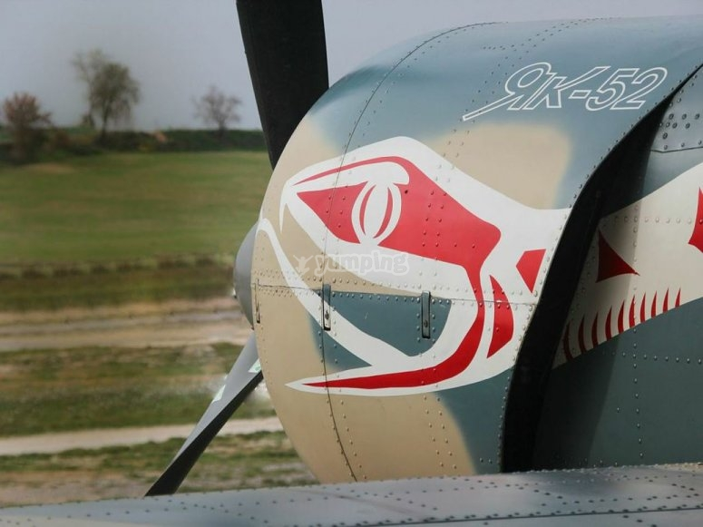 Pintura del avion